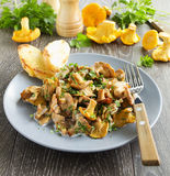 Fried chanterelle mushrooms Royalty Free Stock Images