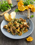 Fried chanterelle mushrooms Stock Images