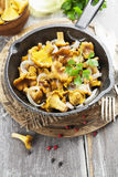 Fried chanterelles Royalty Free Stock Images