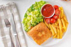 Fried cheese with french fries and lettuce Stock Photos
