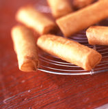 Fried cheese rolls. Food, gastronomy, cuisine,cookery Royalty Free Stock Image