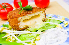Fried cheese with tatar sauce Royalty Free Stock Photos