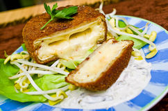 Fried cheese with tatar sauce Stock Photography