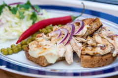 Fried chicken breast on the bread with fresh onion paprika Stock Photos