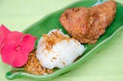 Fried Chicken con la cipolla ed il riso appiccicoso Fotografia Stock