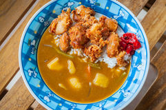 Fried Chicken Curry del giapponese Fotografia Stock Libera da Diritti