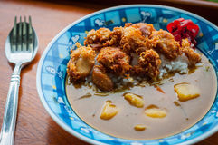 Fried Chicken Curry del giapponese Fotografia Stock