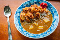 Fried Chicken Curry del giapponese Fotografie Stock Libere da Diritti