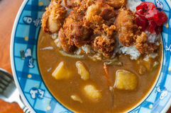 Fried Chicken Curry del giapponese Immagine Stock