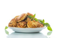 Fried chicken cutlets Royalty Free Stock Photos