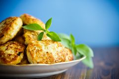 Fried chicken cutlets Stock Images