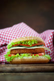 Fried chicken or fish burger sandwich Stock Images