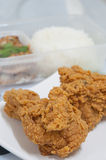 Fried chicken food. Golden brown fried chicken food Stock Image