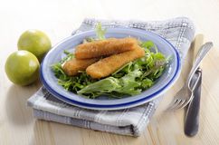 Fried chicken goujons with salad Royalty Free Stock Images