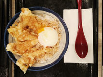 Fried chicken and hard-boiled egg topping on rice as background.  Stock Photos