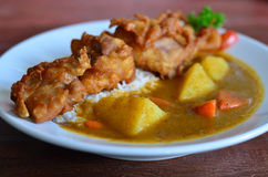 Fried Chicken With Japanese Curry And Rice Royalty Free Stock Images