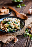 Fried chicken meat with spelt flour dumplings and spinach. Fried chicken breasts pieces with spelt flour dumplings and steamed spinach stock photography