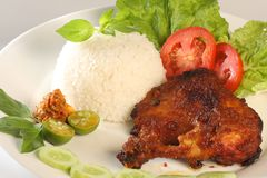 Fried chicken with rice. Fried chicken from indonesia, indonesian fried chicken , fresh fried chicken Royalty Free Stock Images