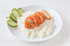Fried chicken rice stock images