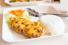 Fried chicken with rice Royalty Free Stock Image