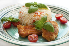 Fried chicken with rice Royalty Free Stock Photo