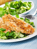 Fried chicken with salad Royalty Free Stock Photo