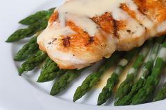 Fried chicken with sauce Hollandaise and asparagus. macro Royalty Free Stock Image