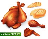 Fried Chicken Set. With hen leg and wing, fillet, carcass with spices, 3d design isolated vector illustration vector illustration