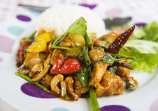 Fried chicken stir fry with onion, cashew nut and sweet pepper. Eating with rice Stock Images