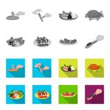 Fried chicken, vegetable salad, shish kebab with vegetables, fried sausages on a plate. Food and Cooking set collection vector illustration