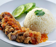 Fried chicken with white rice and sweet sour sauce Royalty Free Stock Photography