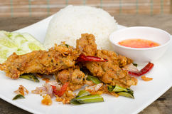Fried chicken wing. With Thailand herb Royalty Free Stock Photos