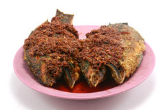Fried chilli paste sauce with fish on white Stock Images