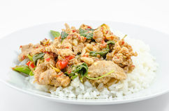 Fried chilly paste sauce with pork Stock Images