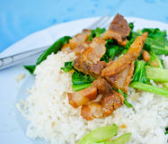 Fried Chinese Broccoli with Crispy Pork Royalty Free Stock Images