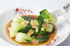 Fried chinese cabbage in oyster sauce Stock Photography