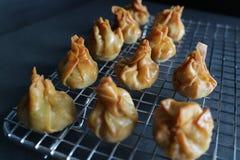 Fried Chinese Dumplings die - rusten stock afbeelding
