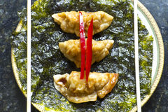 Fried Chinese Dumplings Stock Images