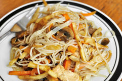 Fried Chinese Noodles Stock Image