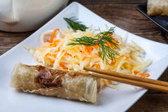 Fried Chinese Spring rolls. Stock Image