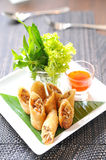 Fried Chinese Traditional Spring rolls Royalty Free Stock Photo