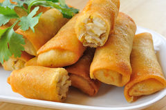 Fried Chinese Traditional Spring rolls Royalty Free Stock Images