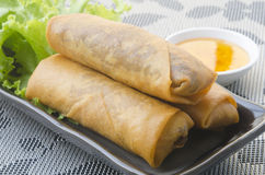 Fried Chinese Traditional Spring rolls food. Fried Chinese Traditional Spring rolls Stock Photo