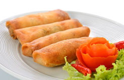 Fried Chinese Traditional Spring rolls food. On white plate royalty free stock photos
