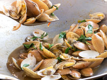 Fried clams Stock Image