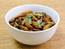 Fried Coconut Worms profondo su un piatto bianco fotografie stock