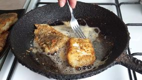Fried cod battered in a cast iron skillet rustic stock footage