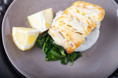 Fried cod fillets and spinach on the plate. Fried cod fillets, spinach and lemon on the plate Royalty Free Stock Image