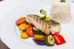 Fried cod with roasted vegetables. Fried cod with roasted vegetables and rice Royalty Free Stock Photo
