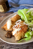 Fried cod and salad Stock Photos